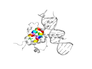 1a0a rendered using PYMOL