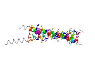 1ci6 ligand
