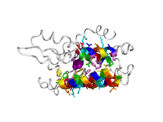 2f2g ligand