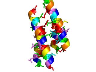 2gsc complex 1 1